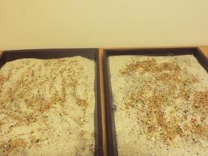 Frischer Sand, Grit und Körner